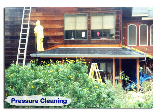pressure_cleaning06