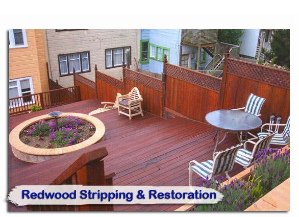 redwood01