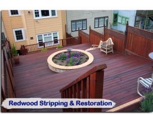redwood14