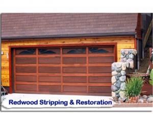 redwood18