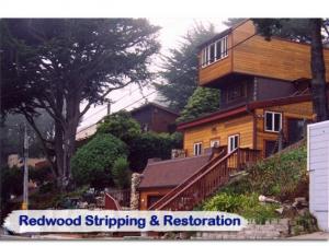 redwood22