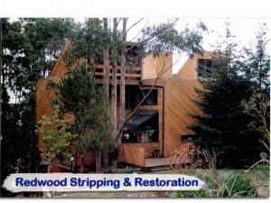 redwood24