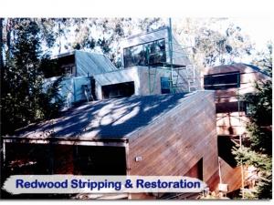 redwood26