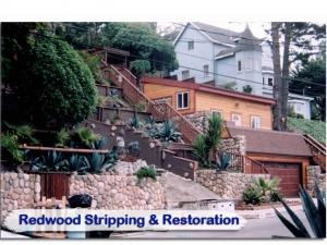 redwood27